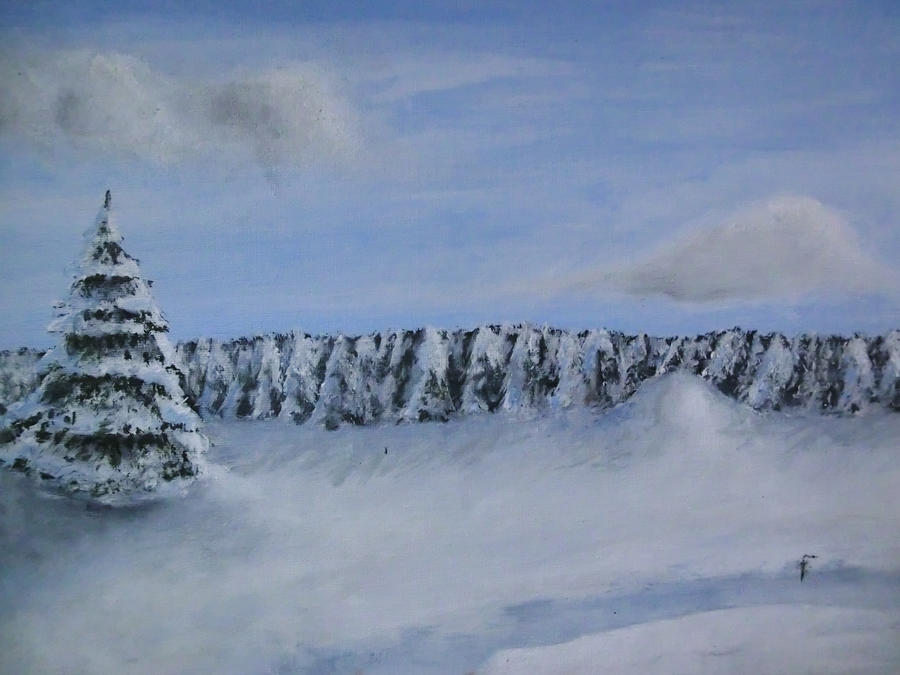 Winterlandscape by NatalieCara