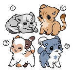 10 points cat adopts! 2 left! [OPEN]