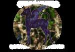 S100 Boucle Foal Design | Bramble