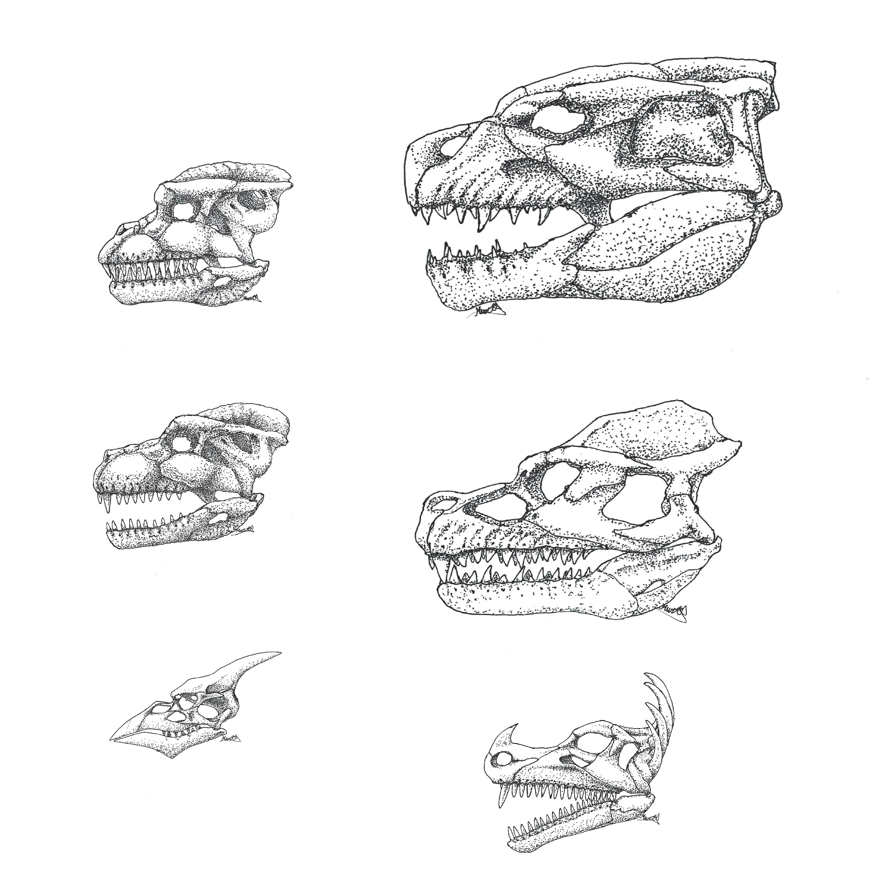 speculative kaiju skulls
