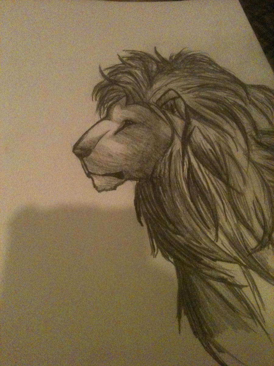 Pencil drawings of lions - photo#22