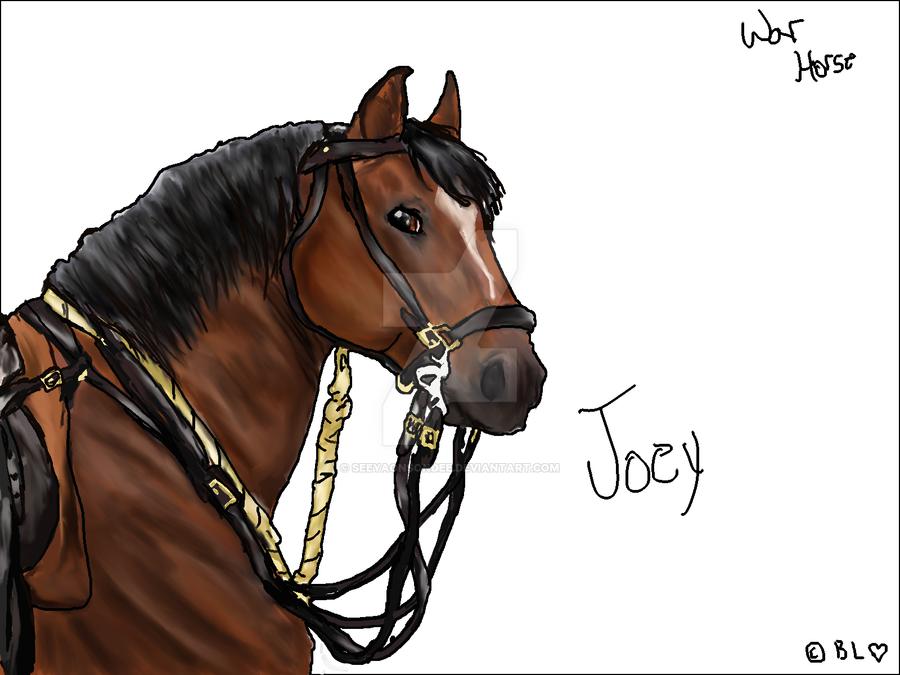War horse joey drawing