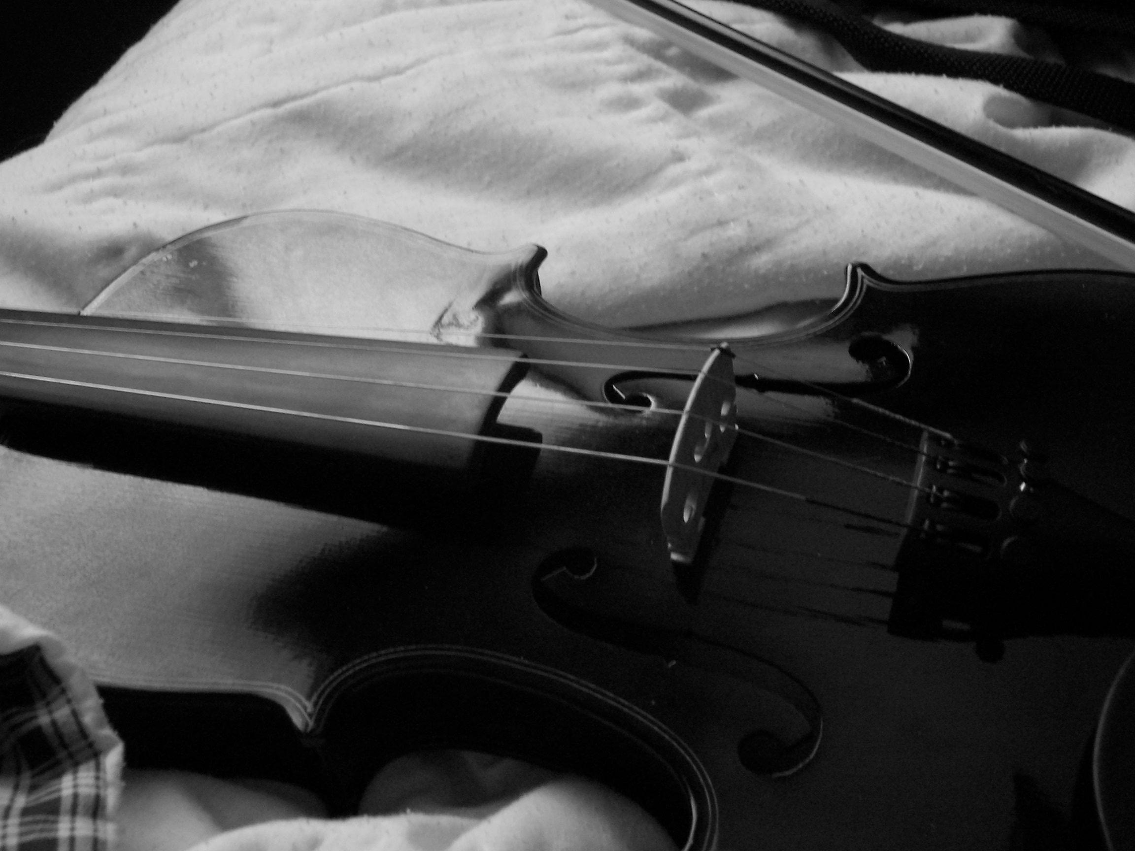 Violin Black And White By WhatIsThis