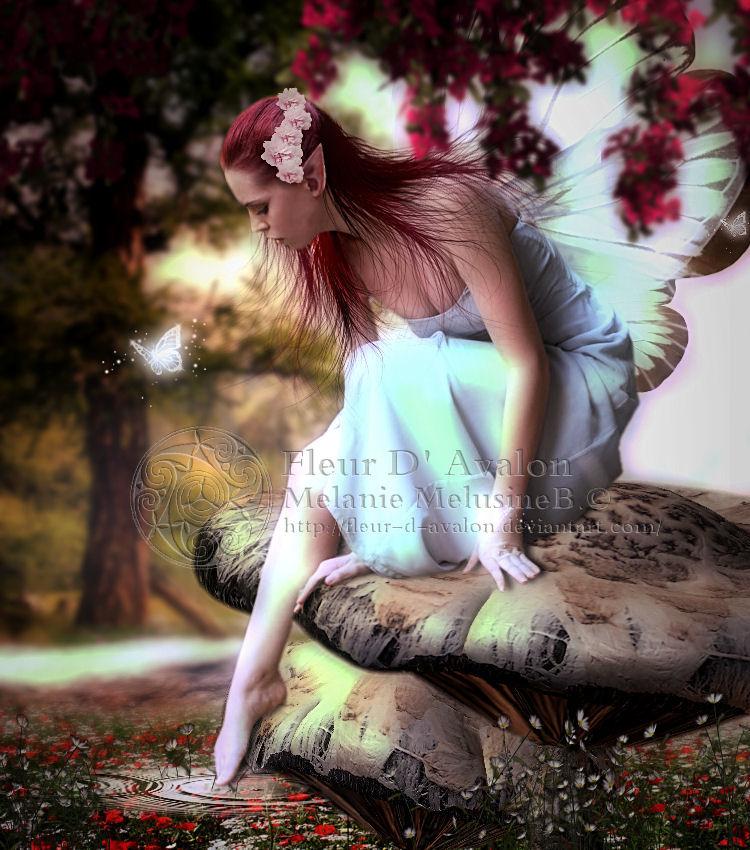Curiosite by Fae-Melie-Melusine