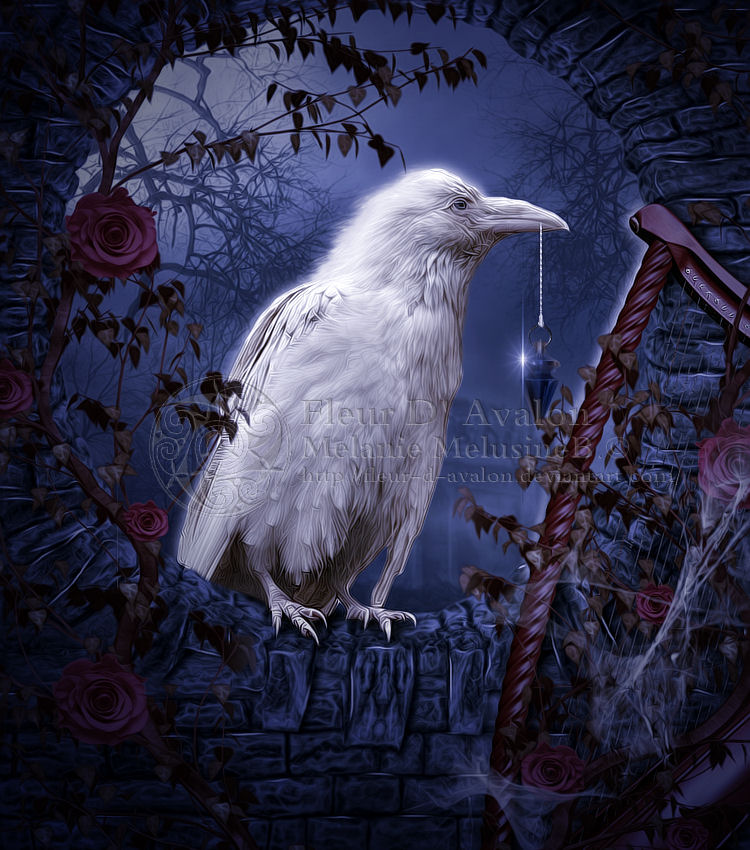 The white Raven by MelieMelusine
