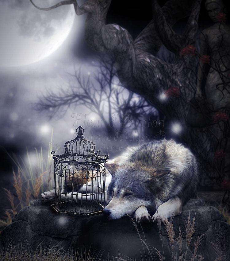 Sweet night by MelieMelusine