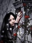 Eve The Dark Rose