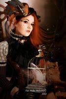 A Steampunk Fairytale by MelFeanen