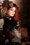 A Steampunk Fairytale