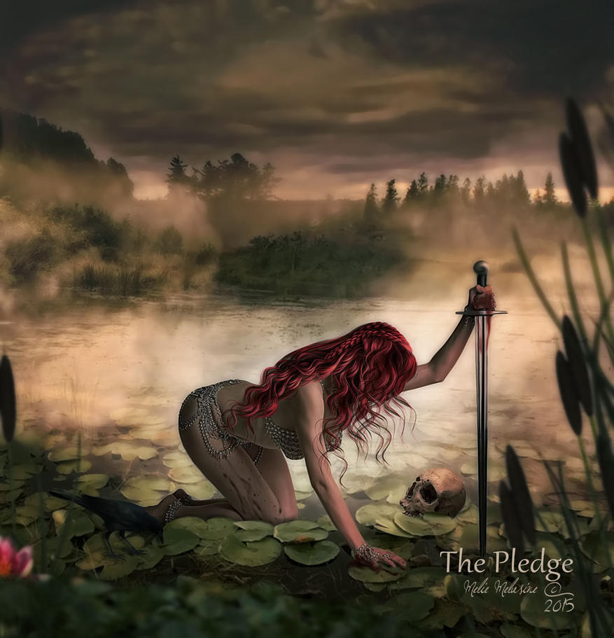 The Pledge by MelieMelusine