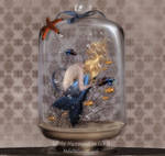 Little Mermaid in Jar II