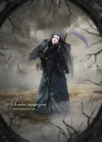 Sombre Messagere by MelFeanen