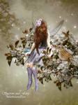 Sparrow and Fairy
