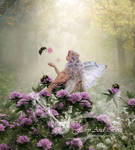 Fairy And Bees