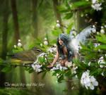 The magic key and blue fairy