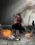 Pumpkins and little Witch