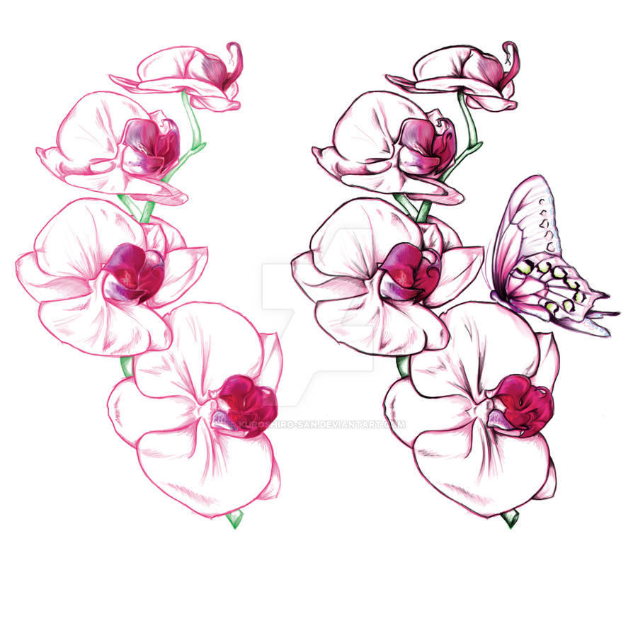 orchid tattoo design by kuroshiro san on deviantart. Black Bedroom Furniture Sets. Home Design Ideas