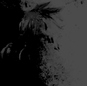 olgolugo's Profile Picture
