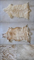 Sheepskin rawhide