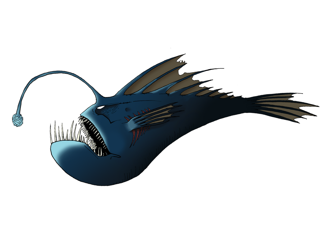 Angler Fish by LuckySevenK42 on DeviantArt for Angler Fish Png  131fsj