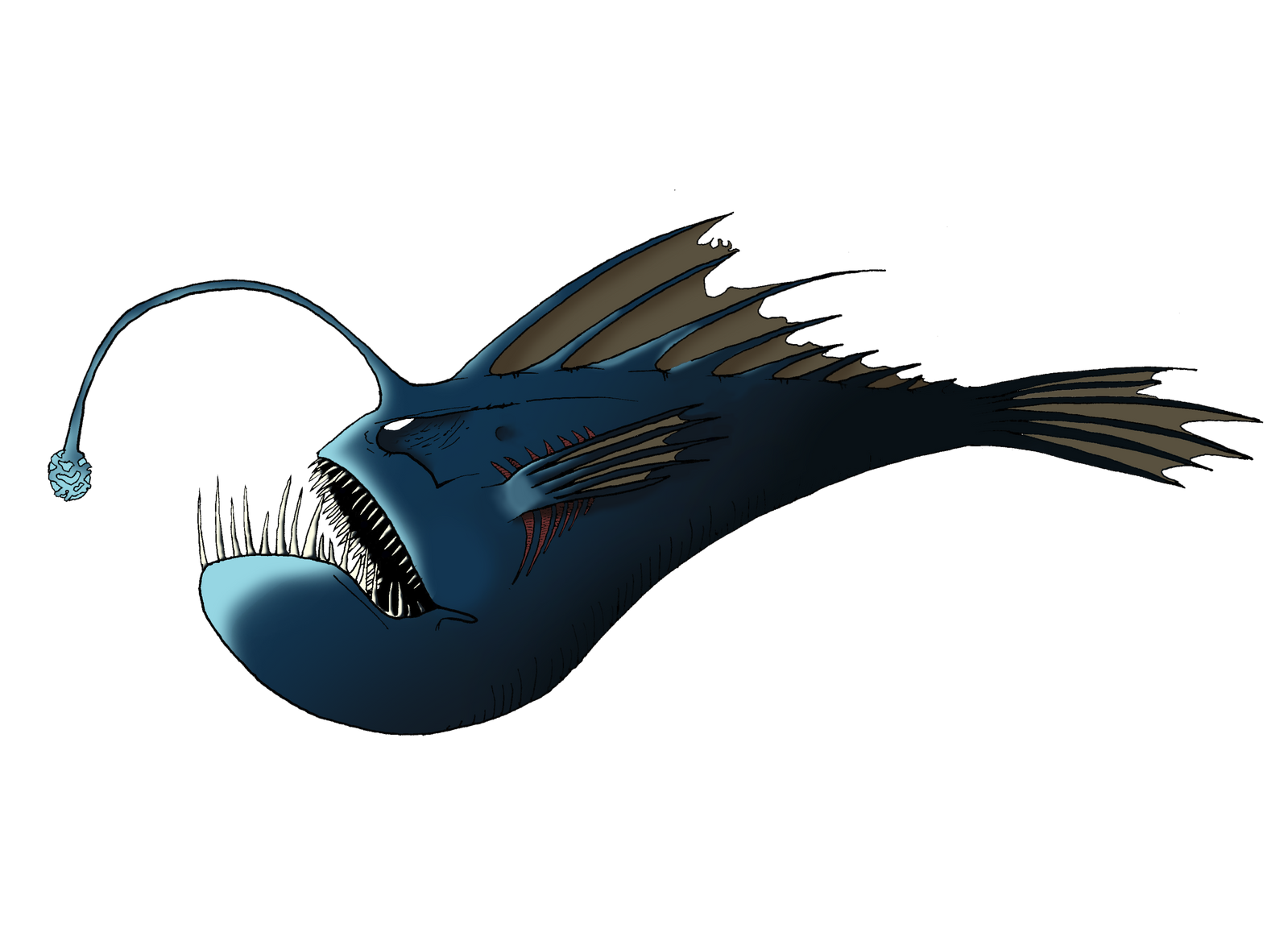 Angler Fish by LuckySe...