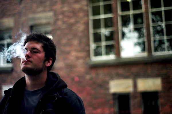 telmopieper's Profile Picture