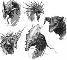 Dragon heads sketches
