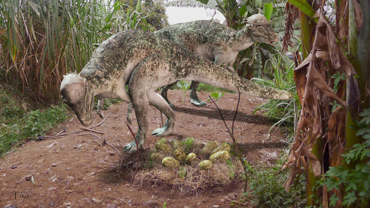 Pachycephalosaurus by Ntvtiko