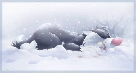 Snow Answers Come in Dreams
