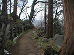 Trail 04