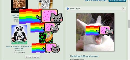 Everywhere Nyan Cat