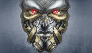 Transformer Face