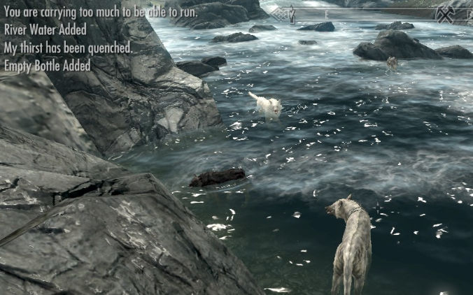 Anyone here play Skyrim? by RayFierying on DeviantArt