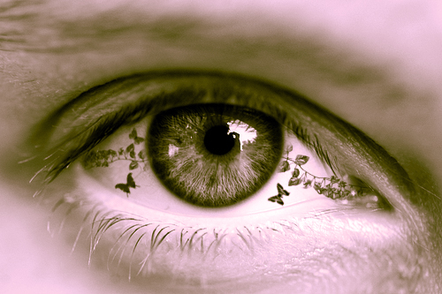 The eye of nature by DejoZ