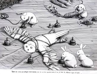 Owls vs Rabbits Part I by ironladyisfe