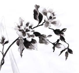 Flowers in Ink by ironladyisfe