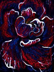 Dark Flower by ironladyisfe