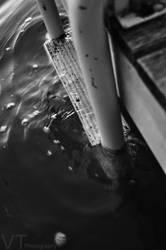 Step into the depths by FishyFishyBoom
