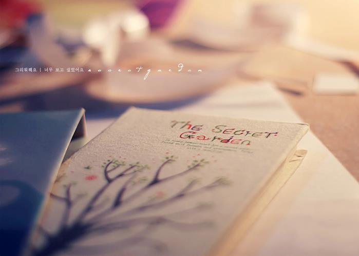 The Secret Garden by bo0xVn