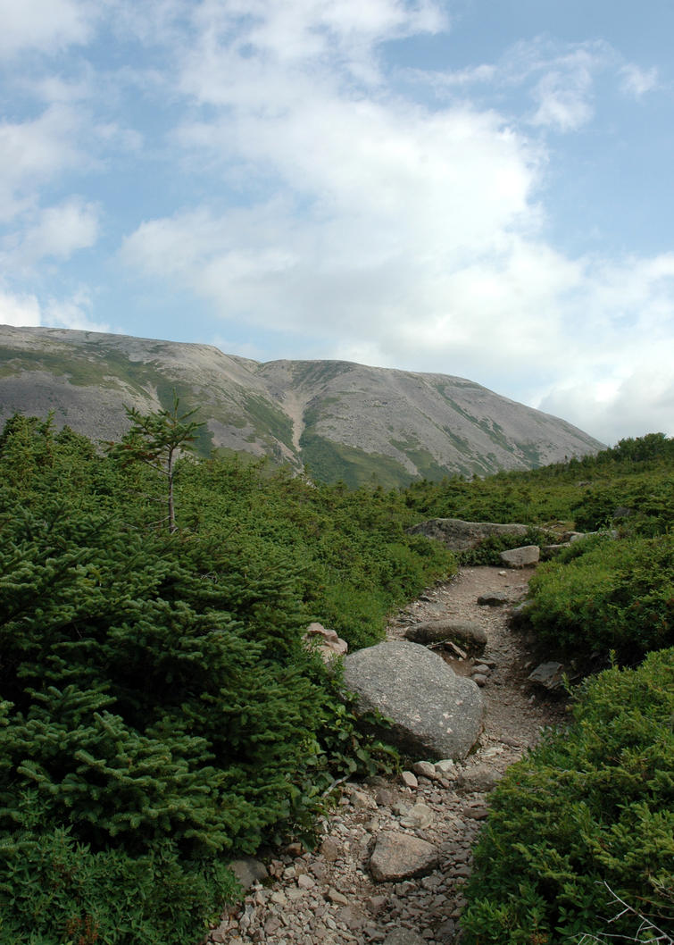 Path to Gros Morne 3 by LucieG-Stock