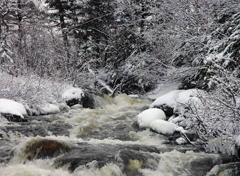 Wintery scene 4 by LucieG-Stock