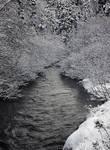 Wintery scene 7