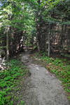 Path in Fundy 2
