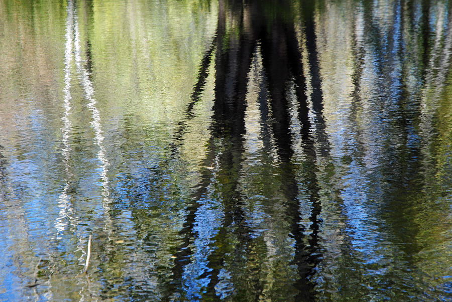 reflected by LucieG-Stock