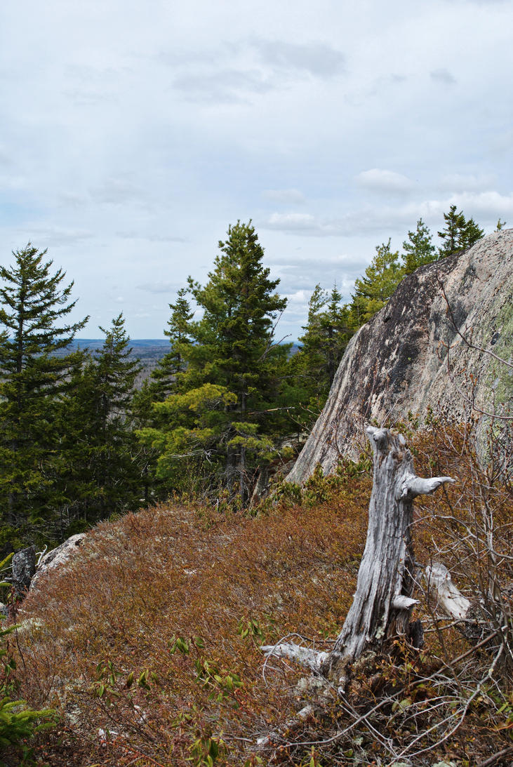 Bald Mountail trail 3 by LucieG-Stock