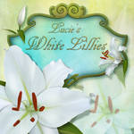 Lucie's White Lillies