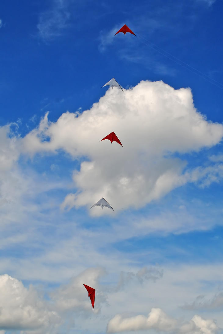 kites 2 by LucieG-Stock