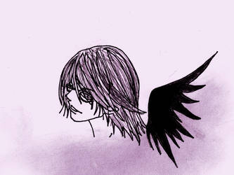 - The winged stray - by illfated-by-kim