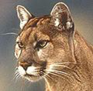 Cougarmint's Profile Picture