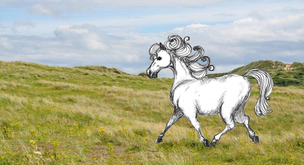 Fat pony by Xrxlxs